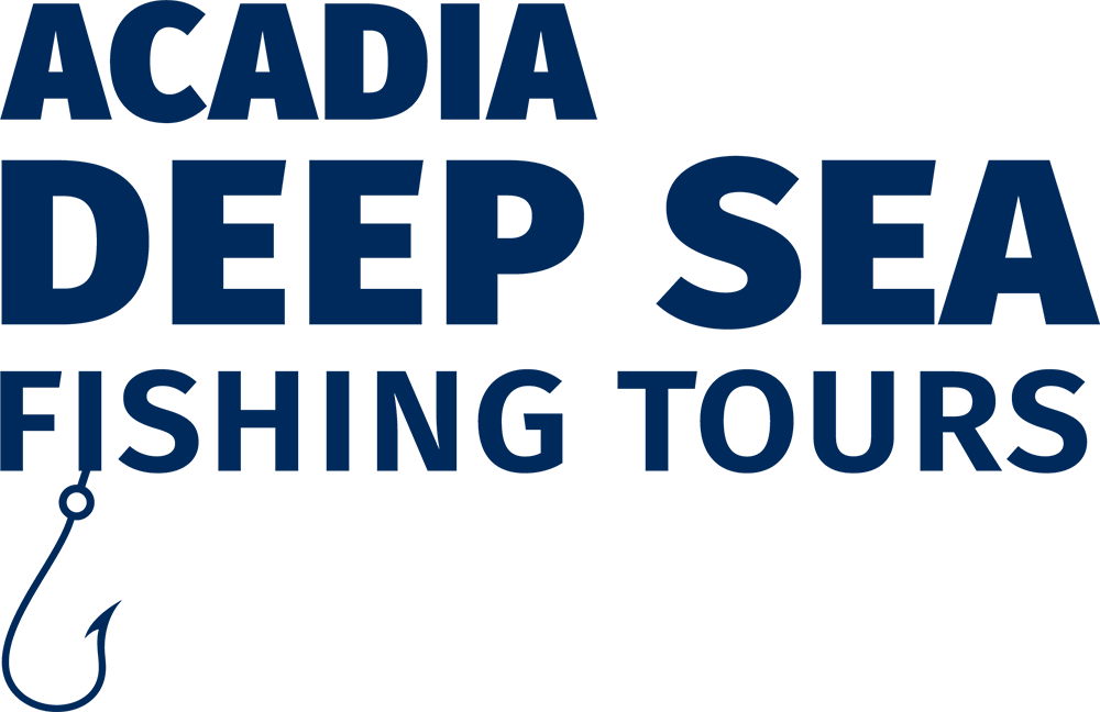 Acadia deep sea fishing and lobster tours southwest for Deep sea fishing maine